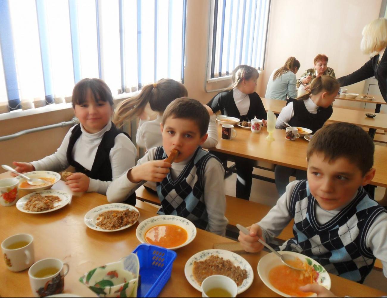 Роспотребнадзор опроверг информацию омассовом отравлении детей вказанской школе №41