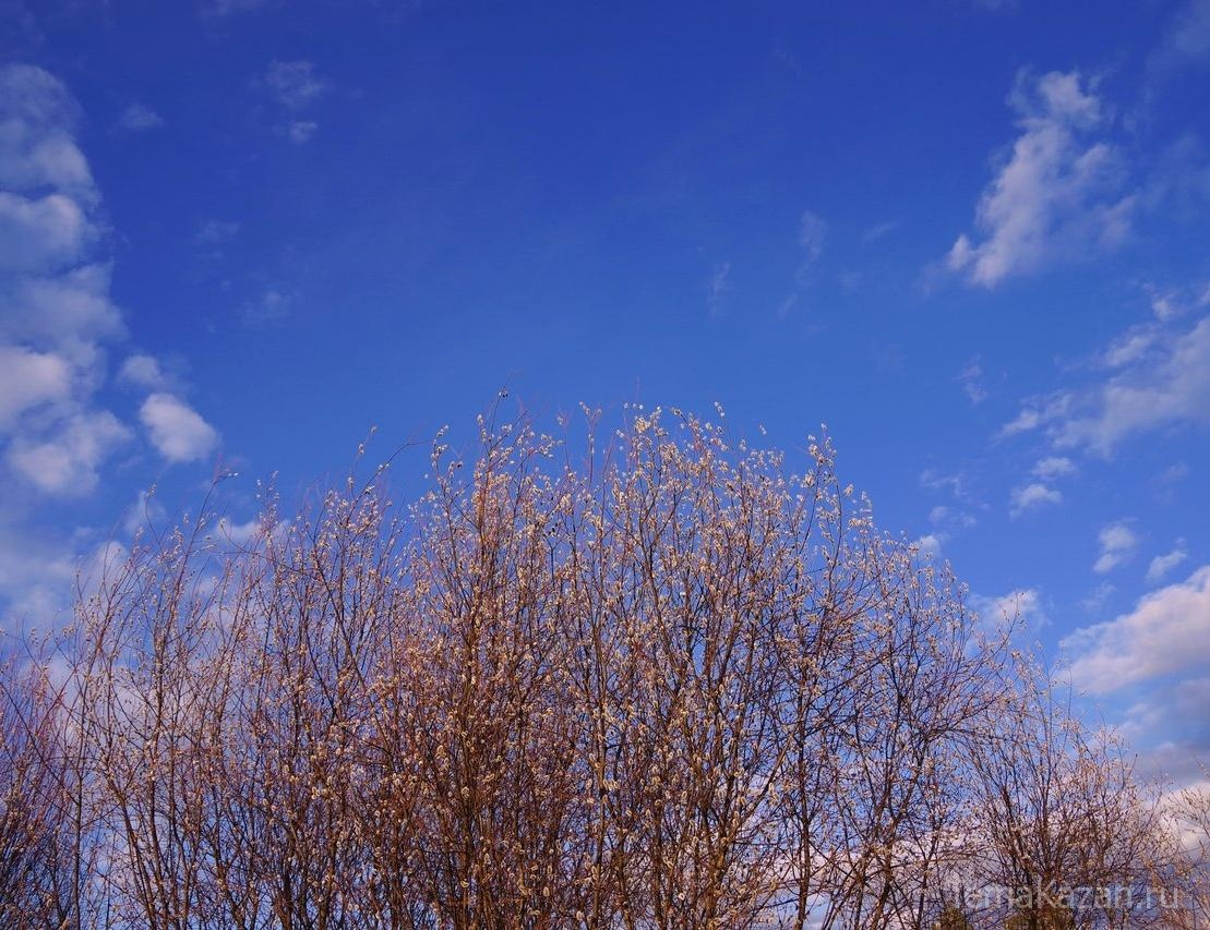 Погода на три дня вперед москва