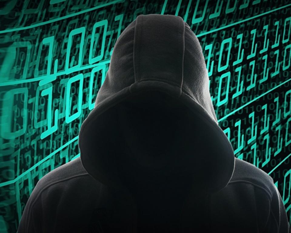Оглашен вердикт хакеру взломавшего защиту «Электронное руководство Республики Татарстан»