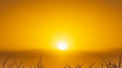 Новости  - 25 июля ожидается жара: воздух прогреется до +30° градусов