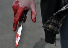 Новости  - Двойное убийство в Казани раскрыли по горячим следам