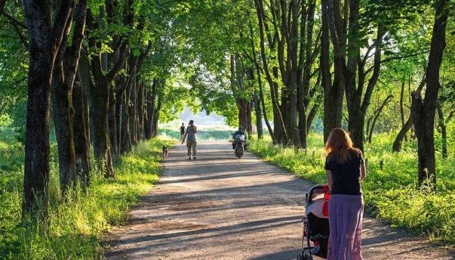 Летом на парки и скверы Казани планируется потратить 63,3 млн рублей