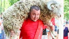 Новости  - На озере Лебяжье и в Дербышках прошёл Сабантуй