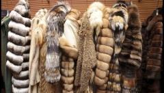 Меховые изделия на 3 млн рублей сняли с продажи в Татарстане
