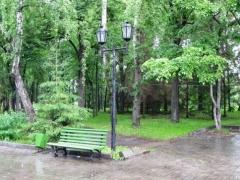 Новости  - Общественники намерены очистить Парк Горького в Казани