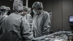 Новости  - 16 550 заболевших коронавирусом выявлено на сегодняшний день