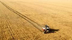 Новости  - В России увеличился экспорт продуктов питания