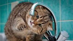 Новости  - Во вторник будет отключено водоснабжение в казанских поселках