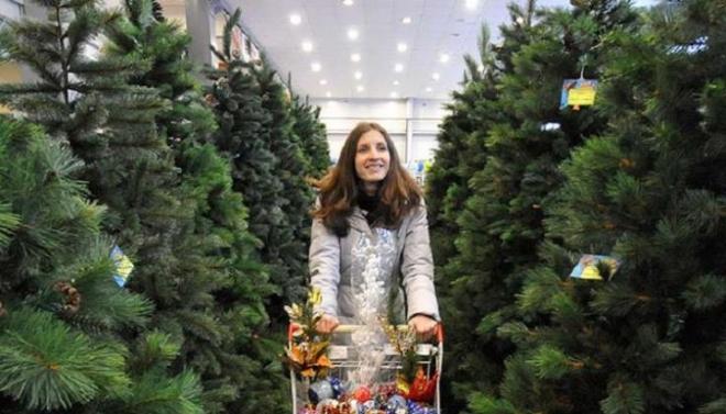 Пункты приёма новогодних ёлок открываются в столице республики