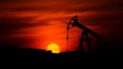 Новости Экономика - В компании  «Татнефть» зафиксирован рост добычи нефти на 3,66%