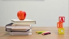 Новости Наука и образование - В Госдуме предложили продлить летние каникулы для школьников и студентов