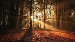 20 октября в Казани и по Татарстану ожидается облачность с прояснениями