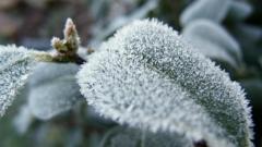 Новости  - 18 декабря по республике ожидается слабый снег