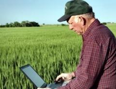 Новости  - Минниханов призвал фермеров активнее развивать интернет-торговлю