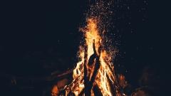 Площадь лесных пожаров в России превысила 10 тыс. га.