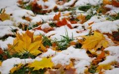 Новости  - В Татарстане выпадет снег