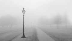 Новости  - В Татарстане ухудшается погода: МЧС предупреждает о сильном тумане