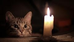 Новости  - В 4 районах столицы Татарстана сегодня отключат электричество