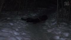 Новости Происшествия - На улице Новаторов в Казани нашли мертвого мужчину