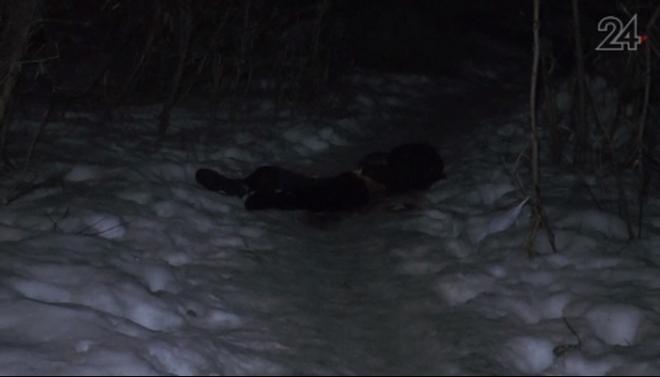На улице Новаторов в Казани нашли мертвого мужчину