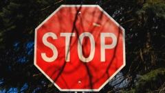 Новости  - Ограничение движения по улице Родины продлили ещё на несколько дней