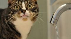 Новости  - Завтра в домах Приволжского района отключат водоснабжение