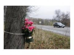 Новости  - Водитель-лихач погубил своего пассажира и нанес травмы другим участникам движения