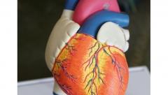 Новости Медицина - По республике выросло число сердечно-сосудистых заболеваний среди населения