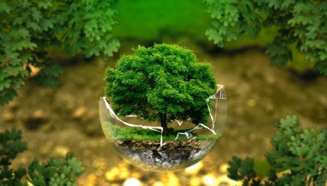 Завтра Казань поддержит традиционную акцию «Час Земли»