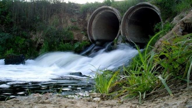 Сточные воды привели к размножению сине-зеленых водорослей в водоемах РТ