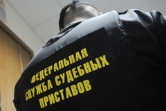 Новости  - У татарстанца за долги арестовали новогоднюю ёлку