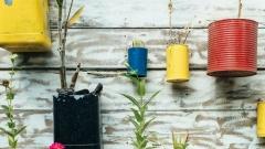 Новости  - В воскресенье казанцы смогут сдать сырье на переработку