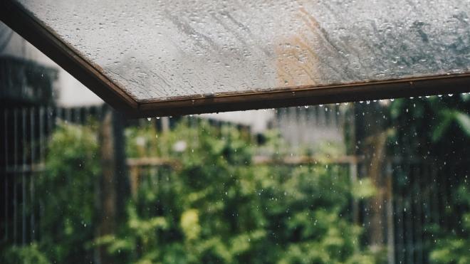 6 октября ожидается дождь и облачность