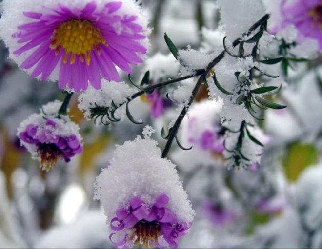 Как осенне-зимний период влияет на наше здоровье