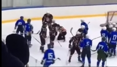 Новости  - В Набережных Челнах хоккеисты избили судью во время матча