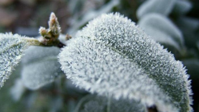 Сегодня в Татарстане до 20 градусов мороза днём