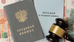 Новости  - Через год в России начнут тестировать новую систему ведения трудовых книжек
