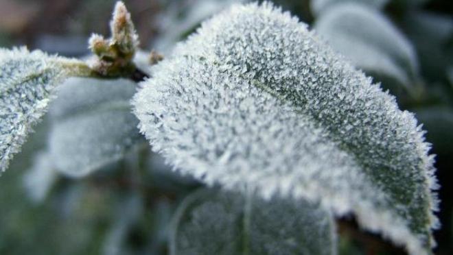 По Татарстану температура воздуха опустится ночью до -32 градусов