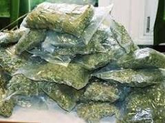 Новости  - Огромное количество гашиша изъяли у группы наркоторговцев в Татарстане