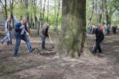 Новости  - В Татарстане начинается  «Зеленая неделя»