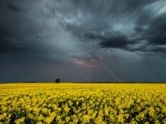 Новости  - В Казани ожидаются грозы со шквалистым ветром