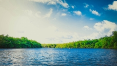 Экологи зафиксировали выброс сточных вод в Волгу