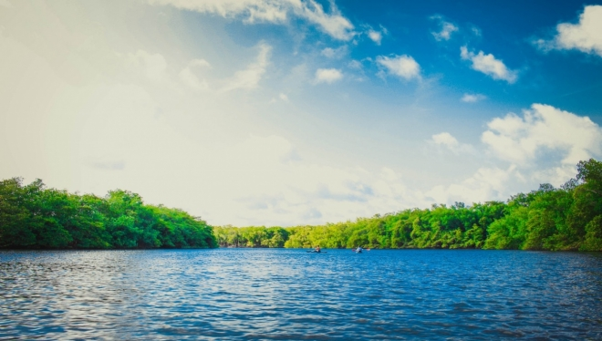 Новости  - Экологи зафиксировали выброс сточных вод в Волгу