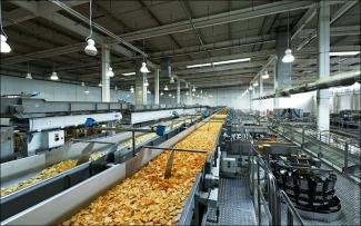 В Татарстане откроют производство по переработке картофеля