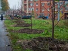 Новости  - Мэр приглашает казанцев принять участие в массовой посадке деревьев в начале октября