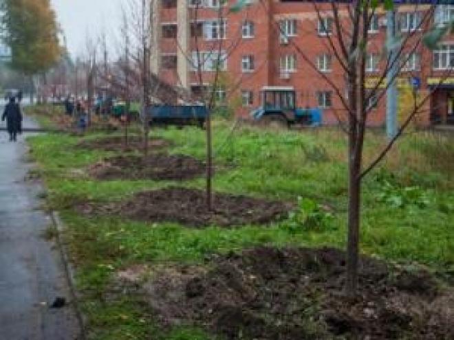 Мэр приглашает казанцев принять участие в массовой посадке деревьев в начале октября