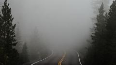 Новости  - Ночью и утром по Татарстану ожидается сильный туман