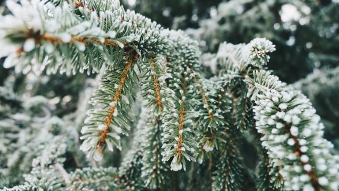 9 февраля по Татарстану ожидается юго-западный умеренный ветер
