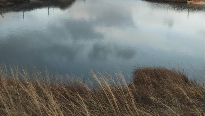 Завтра очистят озеро Лесное в Авиастроительном районе города