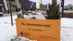Новости Общество - Пункты приема новогодних елок откроются в регионе